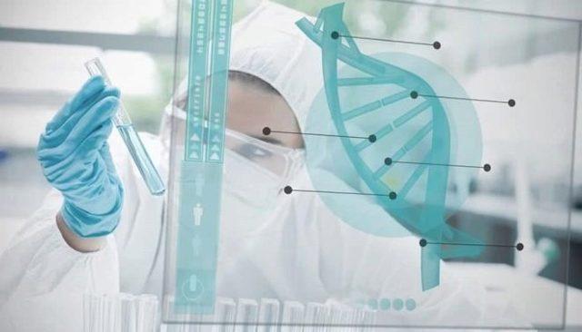 О тесте ДНК во время беременности: определение отцовства, можно ли установить