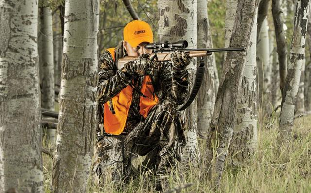 Штраф за охоту без путевки и лицензии: статья и сумма наказания, как оплачивать