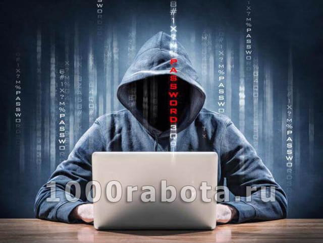 О мошенничестве в интернете: какая статья, виды и схемы заработка мошенничеством