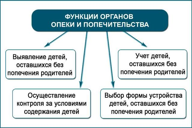Об органах опеки и попечительства: что это такое, чем занимается служба, функции