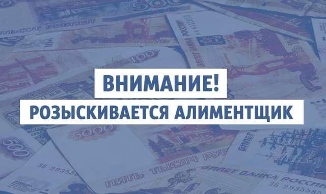 О заявлении на розыск должника по алиментам: как написать заявление приставам