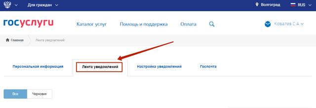 О готовности загранпаспорта: где узнать, как проверить по фамилии через интернет