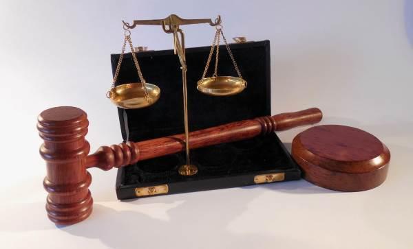 О виндикационном иске: что это такое в гражданском праве, срок исковой давности
