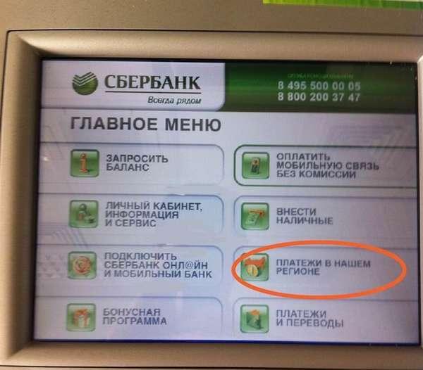 Штраф 2000 рублей за что может быть - какая статья и размер наказания, как оплачивать