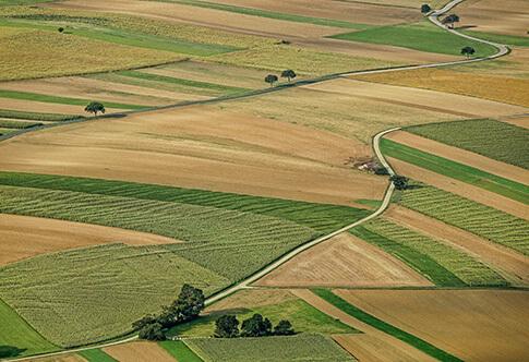 Штраф за неиспользование земель сельскохозяйственного назначения в 2020
