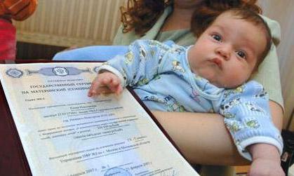 Как оформляют материнский капитал: когда можно получить, процедура оформления