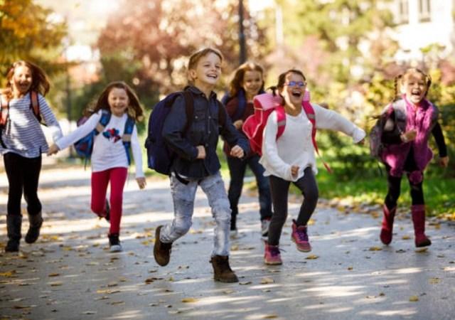 Запись ребенка в школу через Госуслуги: как подать заявление в 1 класс