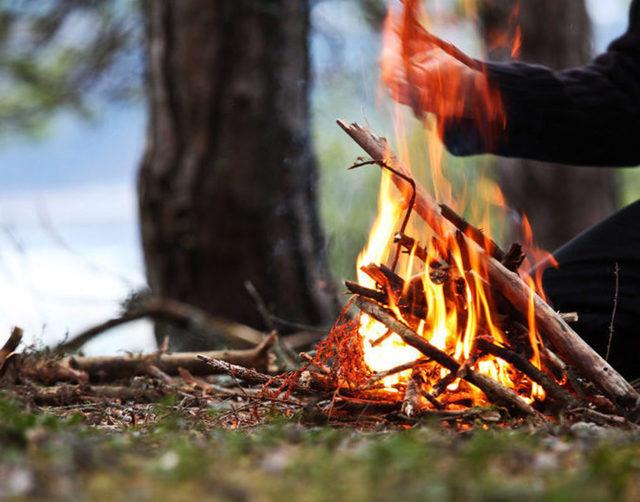 Штраф за костер в лесу в 2020: размер и сумма наказания, как оплачивать