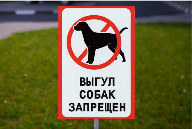 Штраф за выгул собак без намордника, за выгул в неположенном месте в 2020